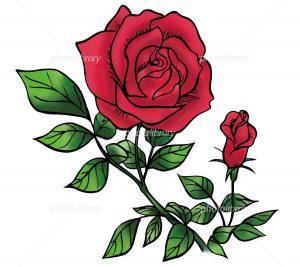 「ことばの花」を心の糧に